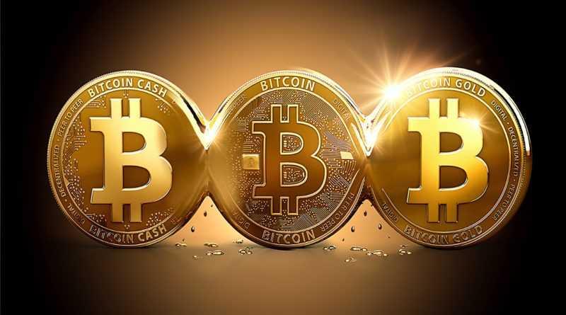Биткоин кэш и блокчейн кошелек