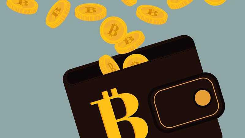 Как выбрать блокчейн-кошелёк?