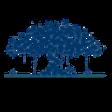 banyan-network